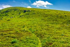 Footpath through the grassy hills of the mountain. Beautiful summer scenery in fine weather with some clouds on a blue sky Stock Photography