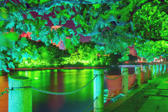 footpath and green trees at night stock image