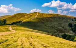 Footpath through hills with forest Royalty Free Stock Image