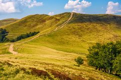 Footpath through hills with forest Royalty Free Stock Photography