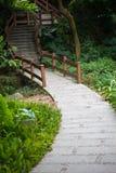 Footpath i kroki Zdjęcie Royalty Free