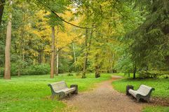 Free Footpath In The Autumn Park Among The Trees Between Two Empty Benches Royalty Free Stock Photos - 131584148