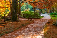Japanese garden in Arboretum, Sochi, Russia. Footpath in the japanese garden with bridge and arbor in Arboretum in sunny autumn day, Sochi, Russia Royalty Free Stock Images