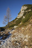 Footpath in the Komna. Mountain plateau, Julian Alps Stock Photos
