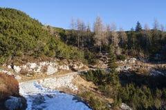 Footpath in the Komna. Mountain plateau, Julian Alps Stock Image