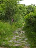 Footpath Lake District Stock Images