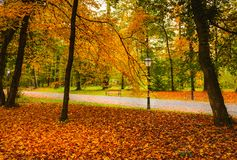 Footpath with lanterns and benches through colorful autumn park stock photo
