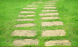 Footpath on lawn Stock Image