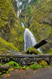 Footpath lead past Wahkeena falls autumn Royalty Free Stock Images