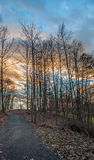 Footpath Leading to Beautiful Sunset Behind Woods Stock Photos