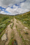 Footpath leading to Dovrefjell, Norway Royalty Free Stock Photos