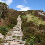 Footpath leading uphill Stock Image