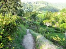 Footpath down to Furnas on Sao Miguel, The Azores. Footpath with lush green vegetation down to the village of Furnas on the island of Sao Miguel, The Azores stock photos