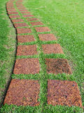 Footpath made from stone on green grass Stock Image