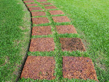 Footpath maed from stone on green grass Stock Images