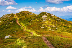 Footpath through a meadow on mountain ridge. Winding footpath through meadows with rocks on the hillside of Carpathian mountain range. Beautiful summer landscape Stock Image