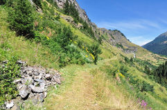 Footpath in mountain. Footpath in alpine mountain in summer stock images