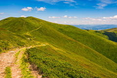 Footpath through the mountain ridge. Summer mountain landscape. footpath uphill through the ridge to the peak. beautiful Carpathian nature scene Royalty Free Stock Photo