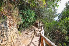 Footpath in the mountains Royalty Free Stock Photos