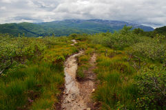 Footpath in the mountains Royalty Free Stock Photo