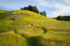 Footpath on Mt. Tamalpais Stock Images