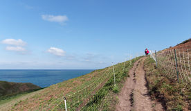 Footpath in Nature Reserve of Upper Normandy. Valleuse of Antifer nature Reserve in Upper Normandy Stock Image
