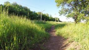 Footpath near railroad stock video footage