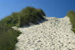 Footpath nearing the top of the dune. Footpath to the top of the sandune Stock Photo