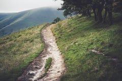 Footpath od Edale Miły harcerz w Szczytowym okręgu Obrazy Stock