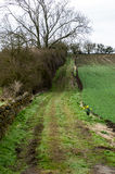 Footpath over fields Royalty Free Stock Photo