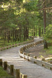 footpath park Obrazy Royalty Free
