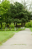 Footpath in park Royalty Free Stock Photo