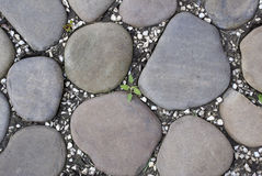 Footpath in park. A footpath foot is laid out by sea stones Royalty Free Stock Photo