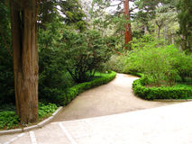 Footpath in park Royalty Free Stock Photos