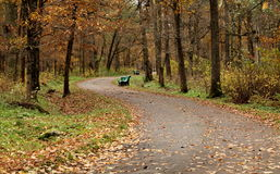 Footpath in park in autumn Royalty Free Stock Photos