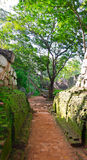 Footpath in a park near mount Sigiriya Stock Images