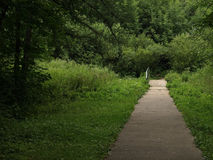 Footpath in park Stock Image