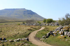 Footpath past limestone pavement to Ingleborough. Stock Photo
