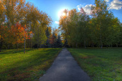 Footpath in a picturesque autumn autumn park Royalty Free Stock Photos