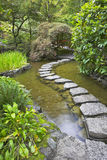 Footpath through a pond. Stock Photo