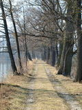 Footpath on the pond dike, South Bohemia. Czech Republic Royalty Free Stock Images
