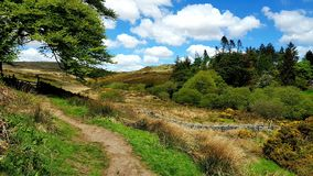Footpath from postbridge Dartmoor. Devon. Footpath from Postbridge on to DartmoorNationalPark Devon royalty free stock photo