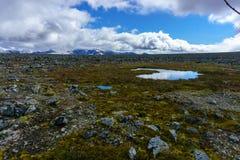 Footpath prowadzi przez parka narodowego w Norway Obrazy Royalty Free