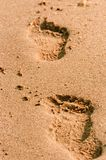 Footpath in the sand Royalty Free Stock Photography