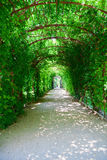 Footpath in Schonbrunn Palace Park Royalty Free Stock Image