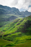 Footpath in Scotland highlands royalty free stock photos