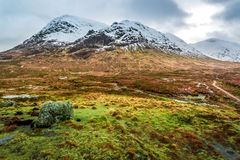 Footpath between snowy mountains Stock Image
