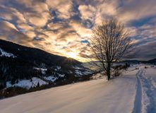 Footpath through snowy rural hillside. Gorgeous sunrise in mountainous winter countryside Royalty Free Stock Images