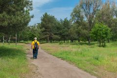 Footpath in spring park royalty free stock photography