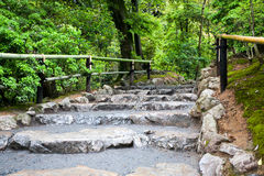 Footpath with staircase made ​​of natural stone Stock Image